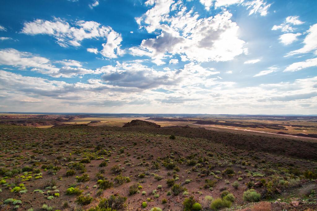USA-2015-Petrified-Forest-8419-Bearbeitet.jpg