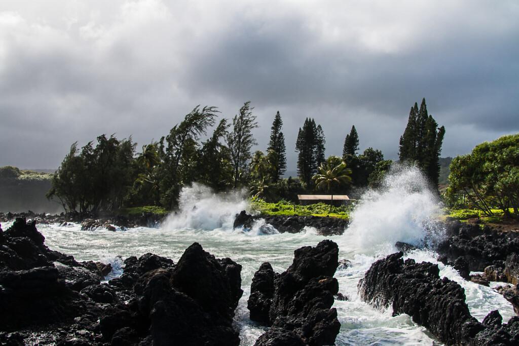 Hawaii-2016-Maui-1387.jpg