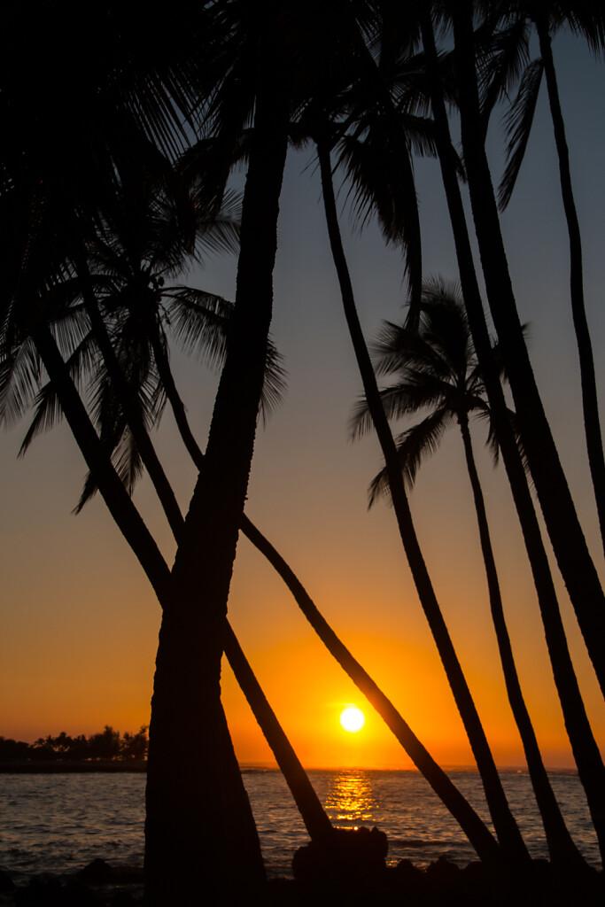 Hawaii-2016-Big-Island-0339.jpg