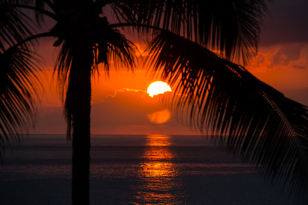 Hawaii-2016-Kauai-0653.jpg