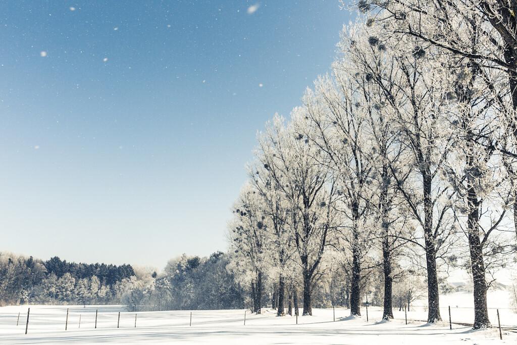 Winter-2016-17-0099.jpg
